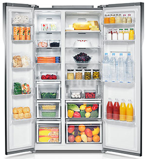 Samsung 604L Frost Free Side by Side Refrigerator RS55k52a01J