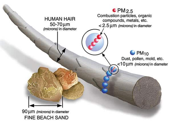 PM2.5 and PM10